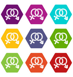 male and female signs icon set color hexahedron vector image