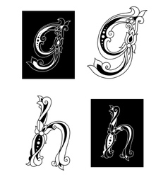 Floral letters G and H vector image