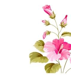 Flower hibiscus vector