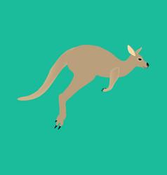 kangaroo animal vector image vector image