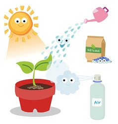Necessary things for plants vector
