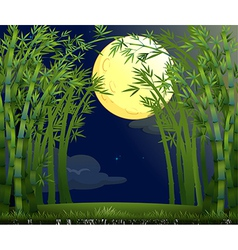 A rainforest under the bright moon vector image