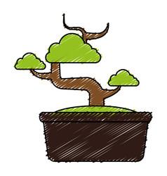 Bonsai tree isolated icon vector