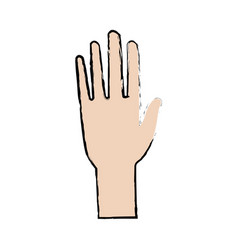 Hand man human open showing five fingers vector