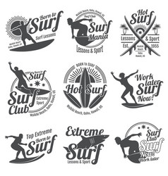 Summer surfing sports logos collection with vector