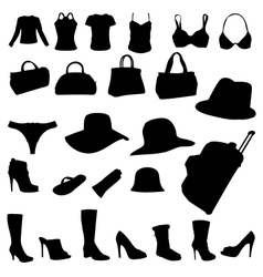 woman accessory vector image