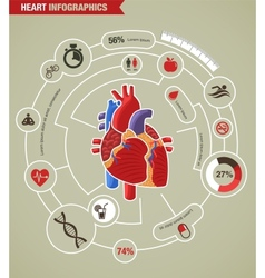 Human Heart health disease and attack infographic vector image
