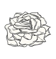 flower decoration free spirit bohemian vector image