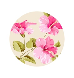 Flower hibiscus vector