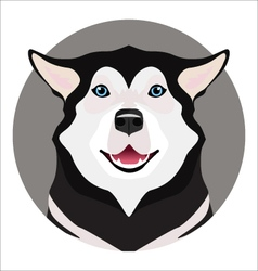 Adorable black and white with blue eyes husky vector