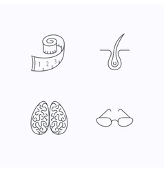Glasses neurology and trichology icons vector image