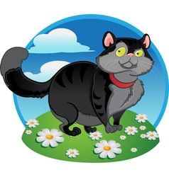 Black fat cat on the color background vector image