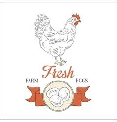 Farm fresh eggs vector