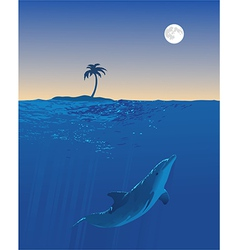 Dolphin moon swim vector