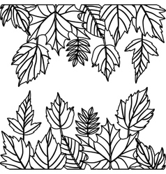 Leaves of autumn season design vector