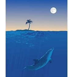 Dolphin Moon Swim vector image vector image