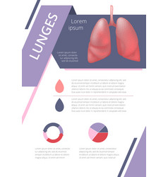 Internal human organs infographic lung vector