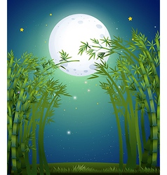 A bamboo forest under the bright fullmoon vector image vector image