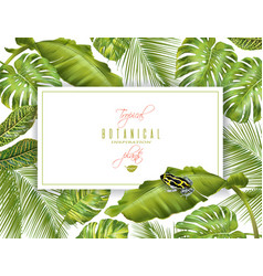 Tropical horizontal banner vector