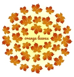 Whirlwind of orange leaves on white background vector