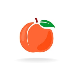 Cartoon style color isolated peach fruit vector