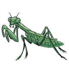 Mantis vector