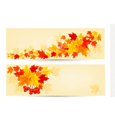 two autumn banners vector image