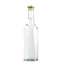 Alcohol drink in bottle vector