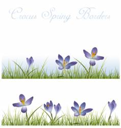 Crocus borders vector