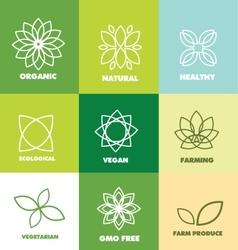Abstract flower organic natural food logo badge vector