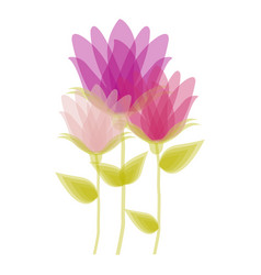 bud flower set icon design floral vector image vector image