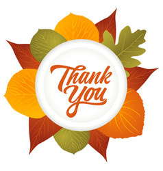 Thank you hand lettering with leaves decoration vector