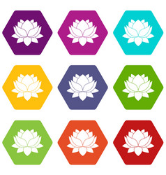 water lily flower icon set color hexahedron vector image