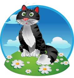 Black funny sitting cat on color background vector