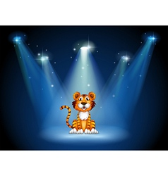 A stage with a tiger vector image