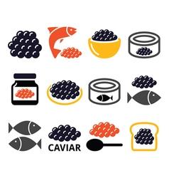 Caviar roe fish eggs icons set vector