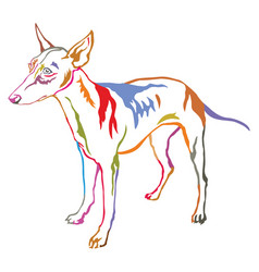 colorful decorative standing portrait of dog vector image vector image