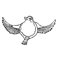 Cute adorable bird flying isolated on a white vector