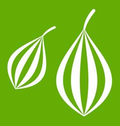 Trachyspermum ammi icon green vector