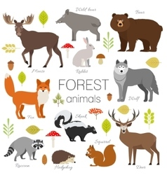 Forest animals isolated set Moose wild vector image vector image