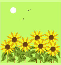 Ripe sunflowers under dim sun in green sky with vector