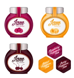 Set of delicious jams vector image