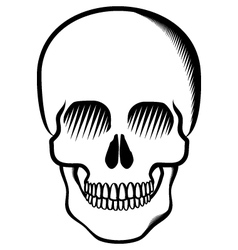 skull black on transparent vector image