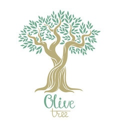 Olive tree  olive oil olive tree for labels pack vector