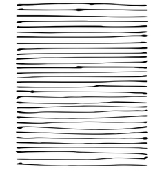 liquid organic black stripe lines pattern on white vector image