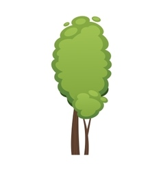 Cartoon tree isolated on white vector image