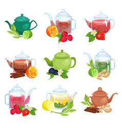 glass and ceramic teapot set natural herbal tea vector image