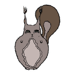 cute adorable squirrel isolated on a white vector image