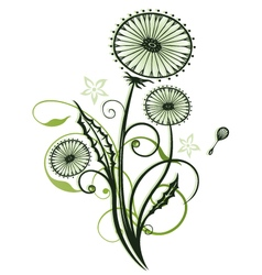 Dandelion with leaves vector image vector image