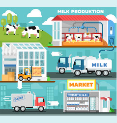 Eco milk production infographics in flat style vector